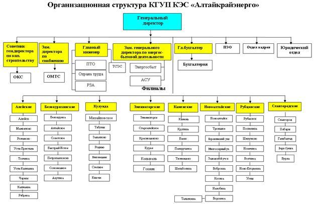 Рис. 3.5. Организационная структура КГУП КЭС «Алтайкрайэнерго»